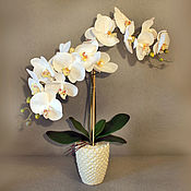 Цветы и флористика ручной работы. Ярмарка Мастеров - ручная работа Белая орхидея в горшке. Handmade.