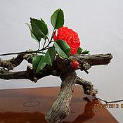 Цветы и флористика ручной работы. Ярмарка Мастеров - ручная работа Гибискус-цветок любви, китайская роза. Handmade.
