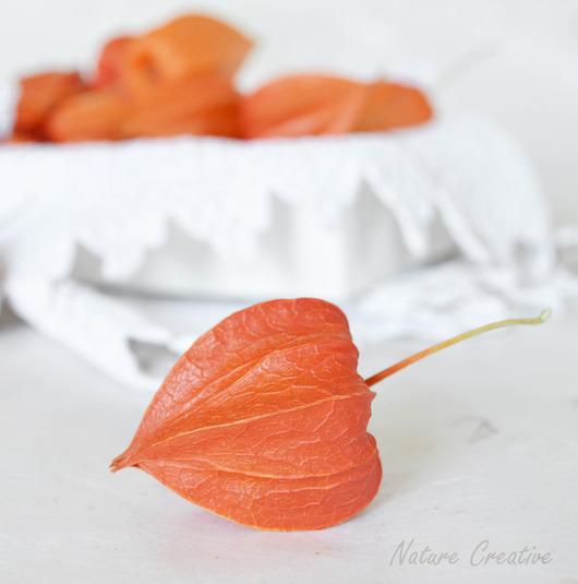 Другие виды рукоделия ручной работы. Ярмарка Мастеров - ручная работа. Купить Физалис сухоцвет плоды - фонарики. Handmade. Рыжий