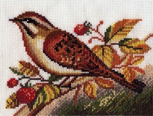 Вышитая картина Овсянка (из серии Певчие птицы), общий вид