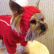 Для домашних животных, handmade. Livemaster - original item Hat for dogs. Handmade.