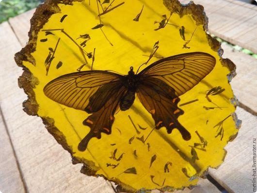 """Статуэтки ручной работы. Ярмарка Мастеров - ручная работа. Купить Сувенир """"Батерфлай"""". Handmade. Бабочка, смола, фигурка, статуэтка бабочка"""