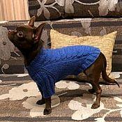 """Одежда для питомцев ручной работы. Ярмарка Мастеров - ручная работа Свитерок """"Колосок"""" для комнатной собачки или кошки. Handmade."""