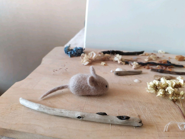 Мышка, Игрушки, Калининград, Фото №1