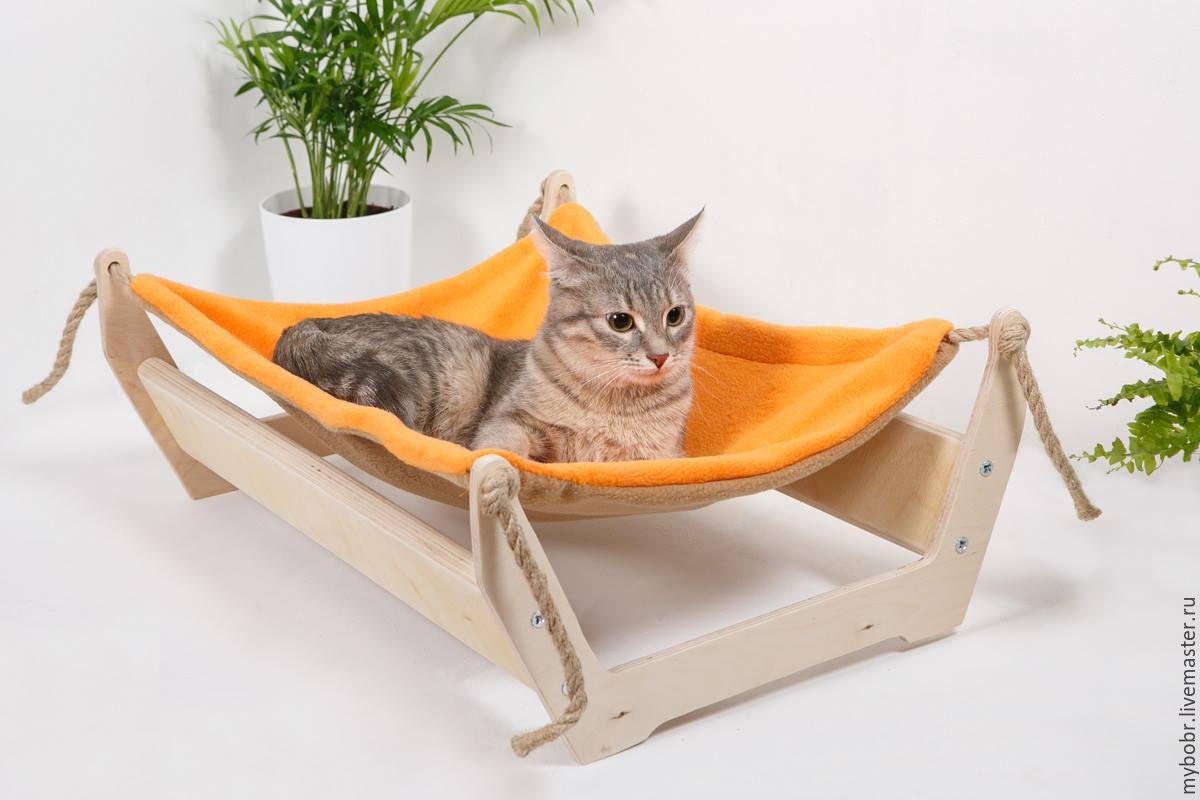 Купить аксессуары для котов