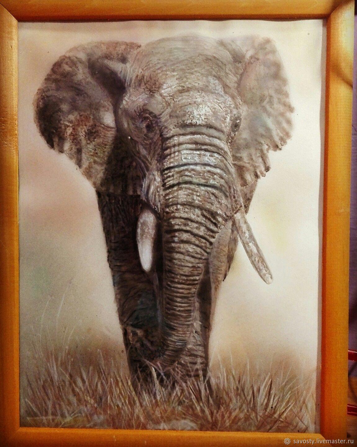 elephant, Pictures, Vladivostok,  Фото №1