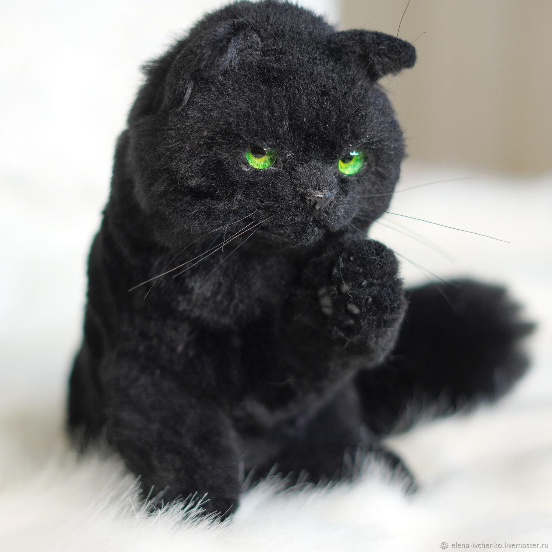 Черный Кот Бегемот, Мягкие игрушки, Волгодонск,  Фото №1