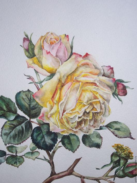 Картины цветов ручной работы. Ярмарка Мастеров - ручная работа. Купить Сломанная ветка. Handmade. Желтый, акварельные цветы