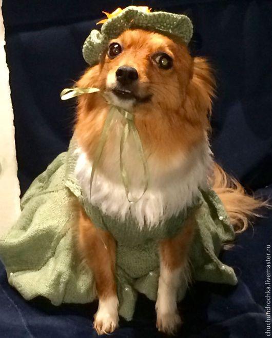 Одежда для собак, ручной работы. Ярмарка Мастеров - ручная работа. Купить Платье Театральное. Handmade. Мятный, выходное платье, мода