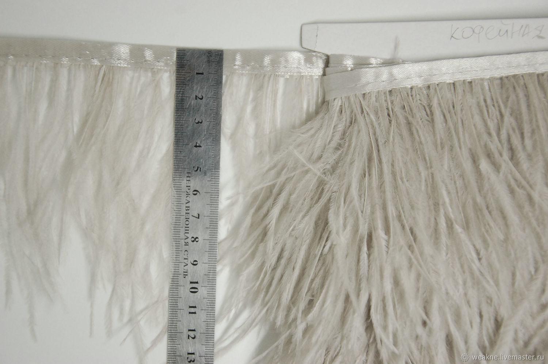 Trim of ostrich feathers 10-15 cm coffee, braid, Moscow,  Фото №1