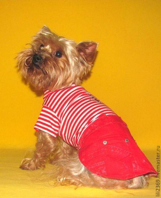 """Одежда для собак, ручной работы. Ярмарка Мастеров - ручная работа. Купить Комплект """"Морская Звезда"""". Handmade. Комплект, одежда для собак"""