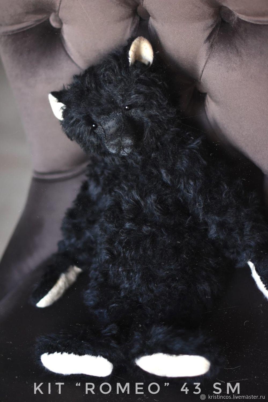 Набор мишка «Ромео»  43 см, Мишки Тедди, Реутов,  Фото №1