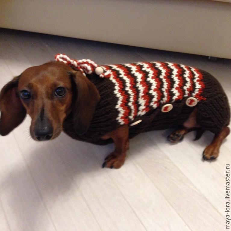 Одежда для собак, ручной работы. Ярмарка Мастеров - ручная работа. Купить Одежда для собак. Комбинезон Такса. Handmade. Такса