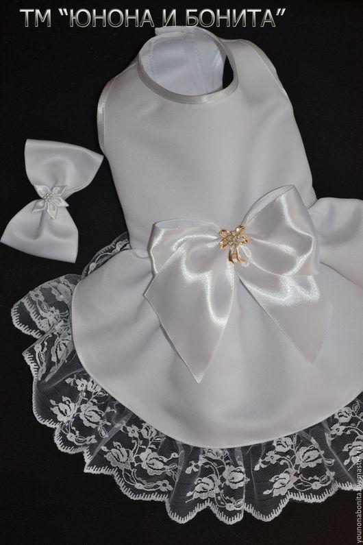 """Одежда для собак, ручной работы. Ярмарка Мастеров - ручная работа. Купить Платье """"День Ангела"""". Handmade. Белый, атласная лента"""