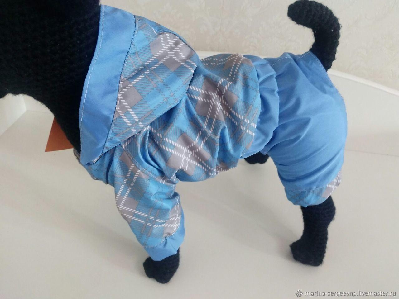 Одежда для собак, ручной работы. Ярмарка Мастеров - ручная работа. Купить Одежда для собак. Handmade. Йоркширский терьер, йорк, чих