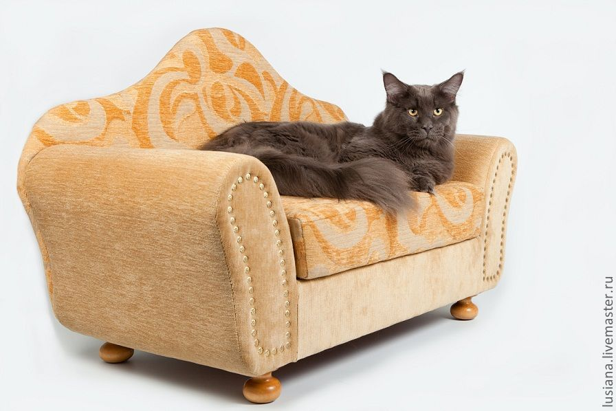 Sofa for dogs, cats order in size, Accessories for Pets, Ekaterinburg,  Фото №1