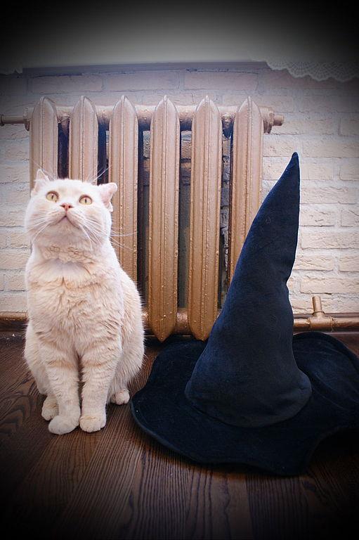 Шляпы ручной работы. Ярмарка Мастеров - ручная работа. Купить Ведьмина шляпа, карнавальная. Handmade. Черный, ведьма, хелоуин