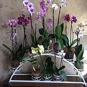 Цветы и флористика handmade. Livemaster - original item Shelf for flowers on the window sill Arc. Handmade.