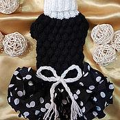 Для домашних животных, ручной работы. Ярмарка Мастеров - ручная работа Платье вязаное для собак той терьер чихуахуа йоркширский терьер. Handmade.