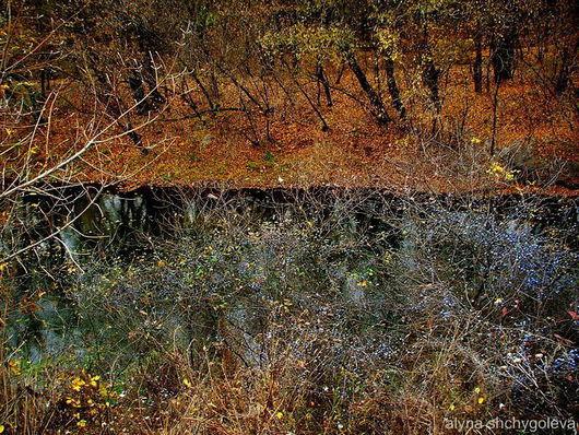 """Фотокартины ручной работы. Ярмарка Мастеров - ручная работа. Купить авторская фотография """"Сапфировое ожерелье"""". Handmade. Осень, золотой, синий"""