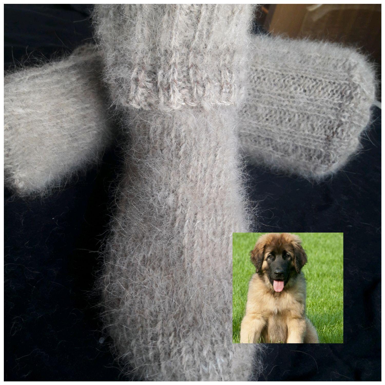 Dog down socks (Combi), Socks, Kursk,  Фото №1