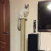 """Для домашних животных, ручной работы. Ярмарка Мастеров - ручная работа Навесная когтеточка """"Дерево"""" (подходит крупным кошкам). Handmade."""