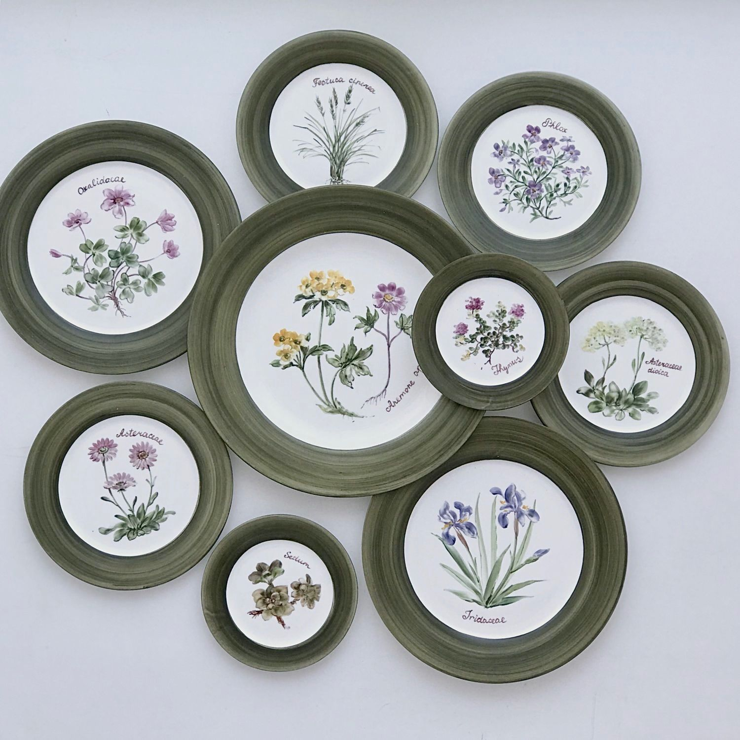 Painted porcelain Collection of plates on the wall of the Botanist on the green, Plates, Kazan,  Фото №1