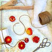 Сухоцветы ручной работы. Ярмарка Мастеров - ручная работа Гелихризум красно-оранжевый, бессмертник. Цветы 5 шт. Сухоцветы. Handmade.