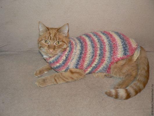 Одежда для кошек, ручной работы. Ярмарка Мастеров - ручная работа. Купить Попонка для кошки или маленькой собаки. Handmade.