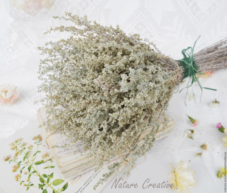 Засушенные травы для декора
