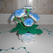 Цветы и флористика handmade. Livemaster - original item Knitted blue gloxinia in the pot. Handmade.
