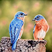 Картины и панно handmade. Livemaster - original item Original pastel drawing Eastern Bluebirds. Handmade.