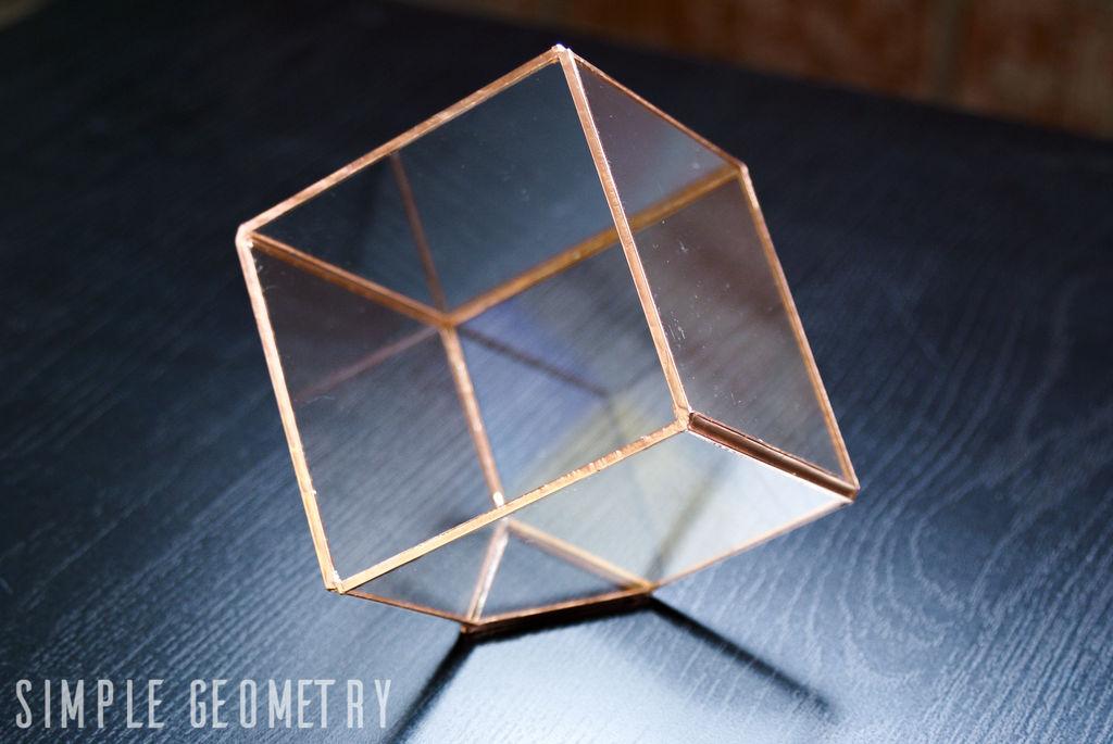 Как сделать геометрический флорариум