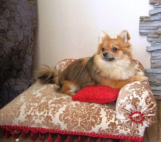 Sofa for a small dog or cat Laura. Available in size, Accessories for Pets, Ekaterinburg,  Фото №1