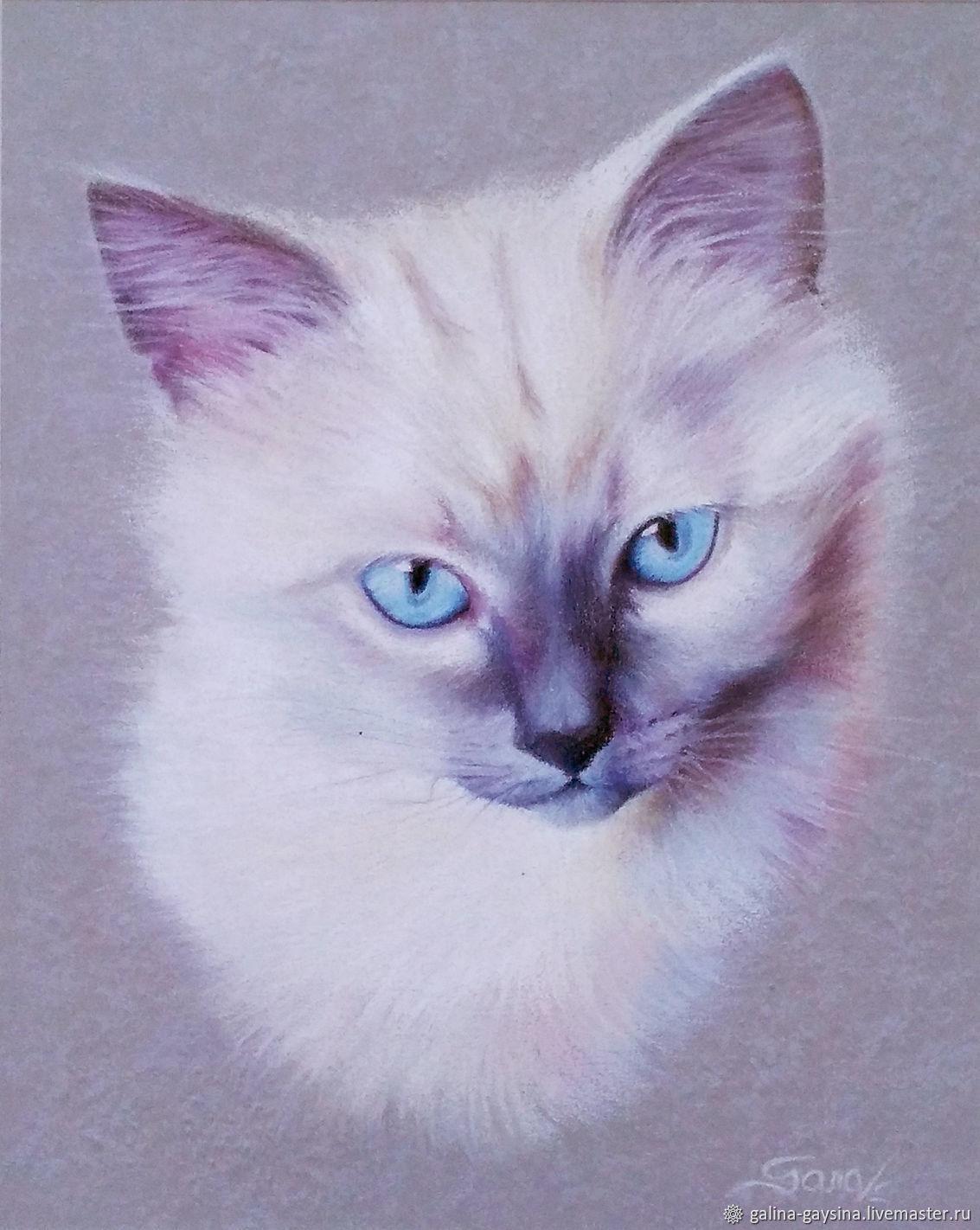 The cat, Картины, Москва,  Фото №1