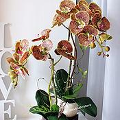 Композиции ручной работы. Ярмарка Мастеров - ручная работа Цветочная композиция с орхидеями из латекса. Handmade.