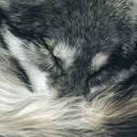 Рунная мастерская Олега - Ярмарка Мастеров - ручная работа, handmade
