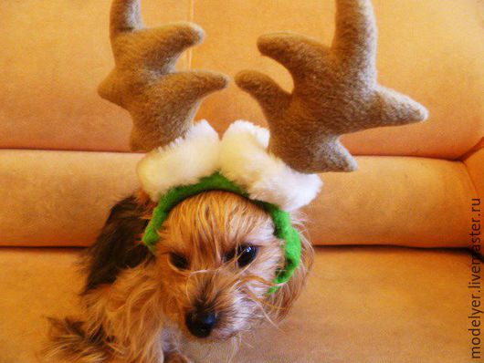 """Обувь для животных, ручной работы. Ярмарка Мастеров - ручная работа. Купить Ободок для животного """" Помошник Деда Мороза""""/ флис. Handmade."""