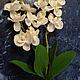 Материалы для флористики ручной работы. Букет орхидей 30 см. Мастерская Чудес. Интернет-магазин Ярмарка Мастеров. Орхидея