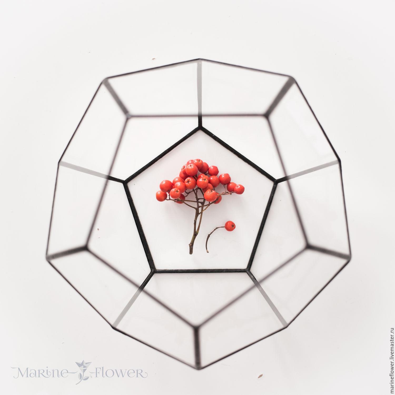 Флорариум додекаэдр, Вазы, Санкт-Петербург,  Фото №1