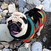"""Для домашних животных, ручной работы. Ярмарка Мастеров - ручная работа Свитер для собаки """"Боб Марли"""". Handmade."""