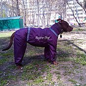 Для домашних животных, handmade. Livemaster - original item Raincoat for dogs. Handmade.