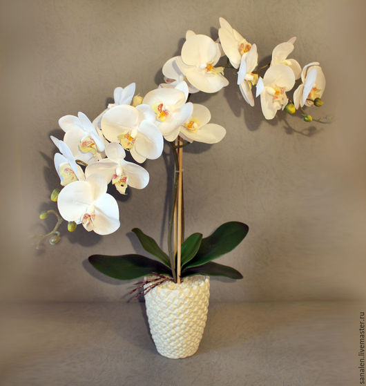 Интерьерные композиции ручной работы. Ярмарка Мастеров - ручная работа. Купить Белая орхидея в горшке. Handmade. Белый, цветок