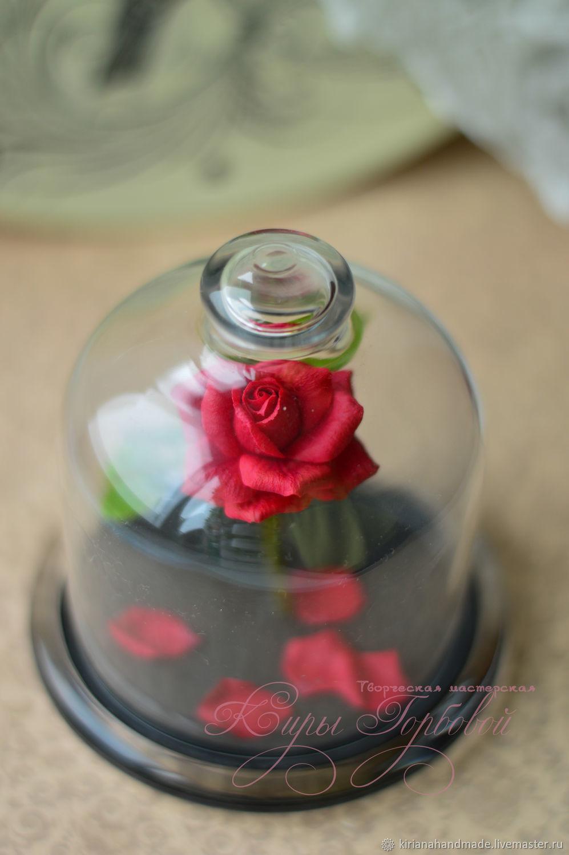 Алая роза под колпаком. Миниатюра. Красавица и чудовище, Цветы, Владивосток,  Фото №1