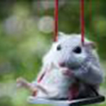 Аринка (arishka-mouse) - Ярмарка Мастеров - ручная работа, handmade