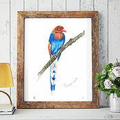 Картины и панно handmade. Livemaster - original item Pictures: Bird watercolor Ceylon azure magpie. Handmade.