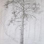 Картины и панно ручной работы. Ярмарка Мастеров - ручная работа Весна, сосна в парке. Handmade.