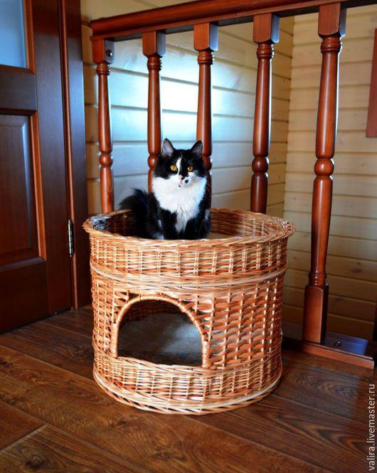 Мастер-класс лежанка для кота