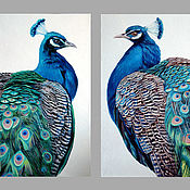 Картины и панно handmade. Livemaster - original item Pictures: Diptych with peacocks, oil on canvas 50h70. Handmade.
