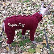 Для домашних животных, ручной работы. Ярмарка Мастеров - ручная работа Комбинезон для Ксоло и Перуанских голых собак- зимний. Handmade.